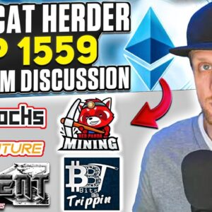 Post Cat Herder EIP 1559 Ethereum Discussion w/ Bitsbetripping, RedPandaMining and More