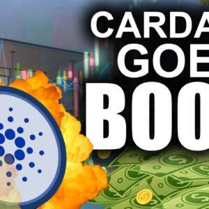 ADA Millions (Getting RICH on Cardano & LOVING It)