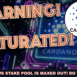 OUR CARDANO ADA STAKE POOL AT DNEWS IS FULL. HERE'S WHAT TO DO NOW TO AVOID LOSING REWARDS.