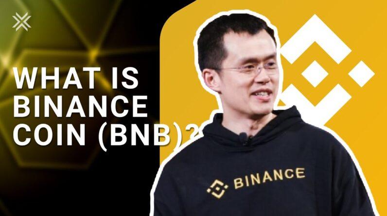 Binance Smart Chain: Binance Coin BNB
