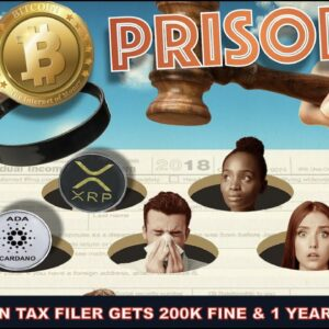 BITCOIN AND CRYPTO INVESTOR GETS 200K FINE & 1 YEAR IN JAIL FOR TAX EVASION.