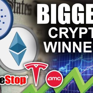 Ethereum & Cardano BIGGEST WINNERS of 2021 (Bitcoin Still Knocks out Gold)