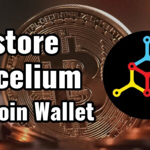 How to Restore Mycelium Android Bitcoin Wallet Using Backup Words