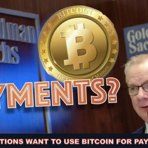 INSTITUTIONAL BITCOIN: PAYMENTS & HEDGE BUT THEY WILL DUMP IT