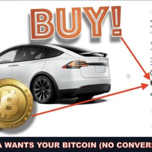 TESLA ACCEPTS BITCOIN AS PAYMENT AND WON'T CONVERT TO CASH.