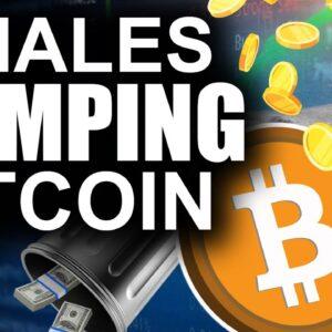 Whales DUMPING Bitcoin (Secret Reason Why)