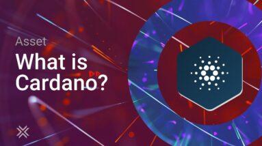 What is Cardano ADA? ADA Coin 2021 Update