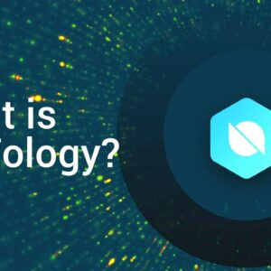 What is Ontology Coin (ONT Crypto)?