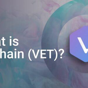 What is VeChain? (VET Crypto)