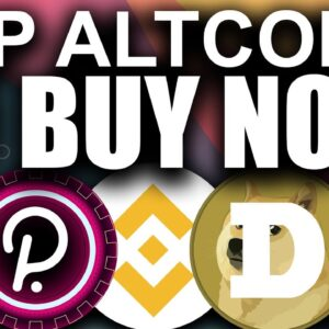 TOP Altcoins to BUY NOW (Market Guide 2021)