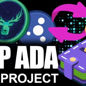 Top Cardano DEFI Project Set to EXPLODE in 2021