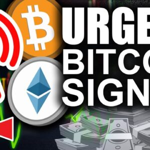 Urgent Bitcoin Price Signal (Strongest On Chain Indicator)