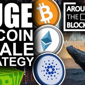 HUGE Bitcoin Whale Strategy Revealed For 2021 (Best Altcoin Picks)