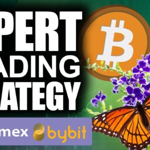 MILLIONAIRE Maker Bitcoin Trading Strategy (Top Experts DO THIS!)