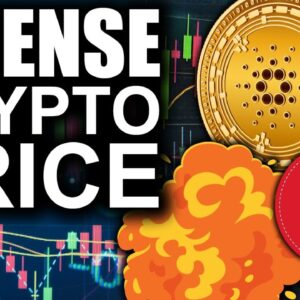 Cardano Gains On Bitcoin (INTENSE Price Action Ahead)
