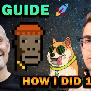 NFT GUIDE - How I Did 100x in 3 Months (CryptoPunks, Bored Ape Yacht Club, Doge Pound)