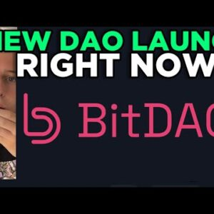 New DAO launches after $230M funding round - BitDAO