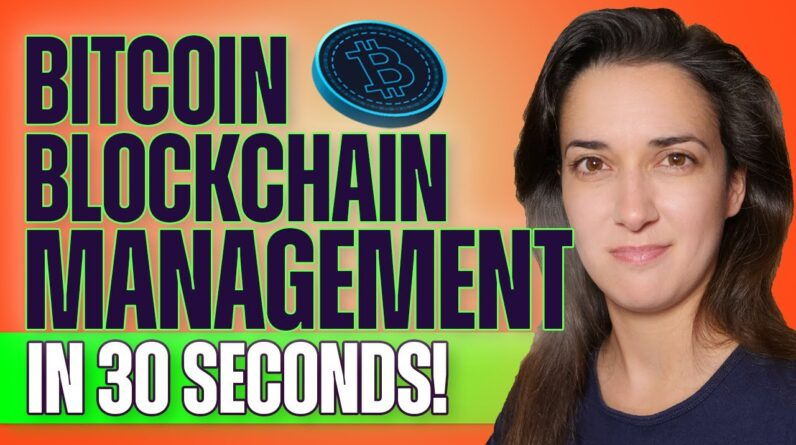How Computers Manage the Bitcoin Blockchain (In 30 Seconds!) #shorts