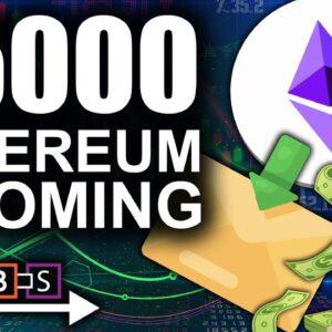 $5000 Ethereum Around The Corner (Greatest Marketplace Burns Huge Amounts) | BitBoy Crypto
