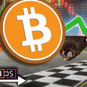 Bitcoin And Shiba Inu Smash All Time High (Crash or Super Gains Ahead?)