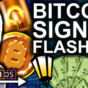Super RARE Bitcoin Signal Just Flashed! (Indicator That Does Not Miss)